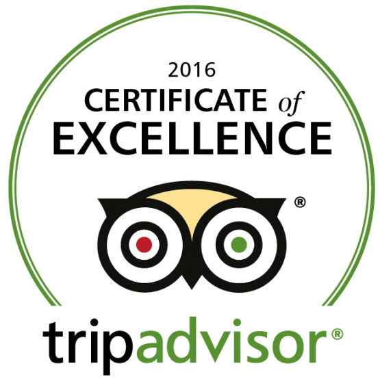 TripAdvisor Reviewer Certificate of Excellence