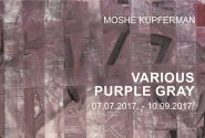 Moshe Kupferman VARIOUS PURPLE GRAY