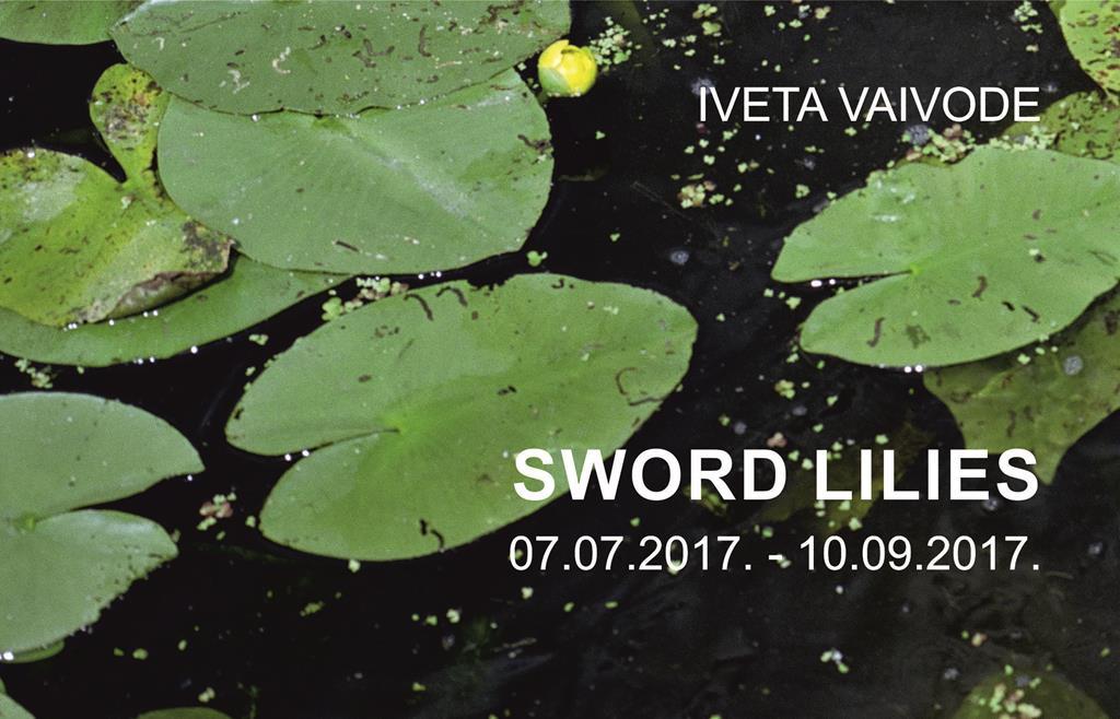 Iveta Vaivode SWORD LILIES