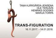TRANS – FIGURATION