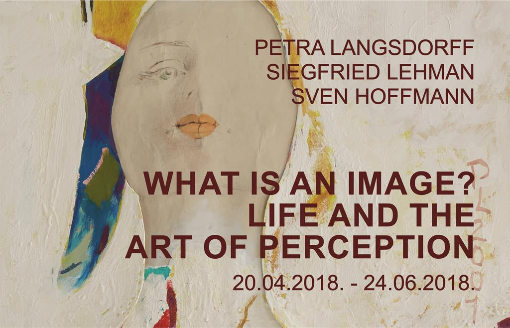What is an image? Life and the Art of Perception