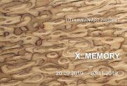 X: Memory